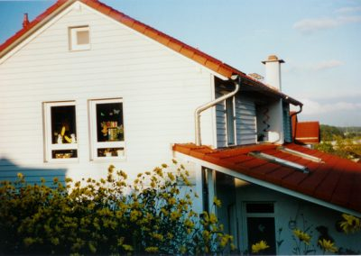 Fassade mit Profilbretter
